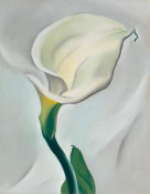 Georgia O'Keeffe - Calla Lily Turned Away, 1923
