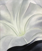 White flower 1929 by georgia okeeffe paper and canvas print georgia okeeffe morning glory with black mightylinksfo