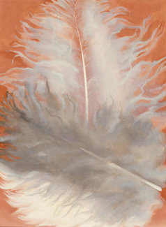 Georgia O'Keeffe - Feathers, White and Grey, 1942
