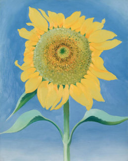 Georgia O'Keeffe - Sunflower, New Mexico 1, 1935