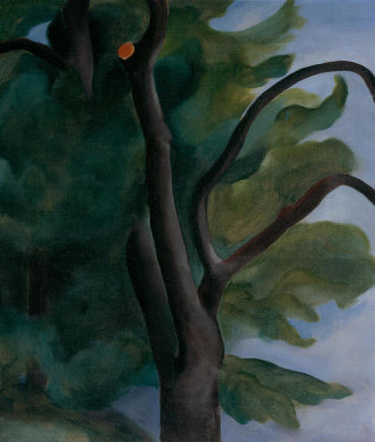 Georgia O'Keeffe - Tree with Cut Limb, 1920