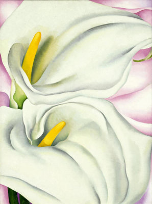Georgia O'Keeffe - Two Calla Lilies on Pink, 1928