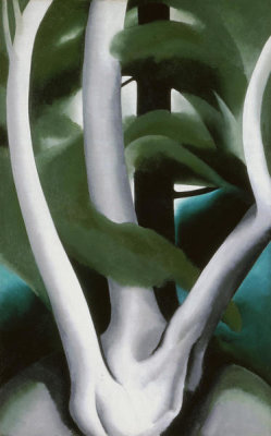 Georgia O'Keeffe - Birch and Pine Tree No. 1, 1925